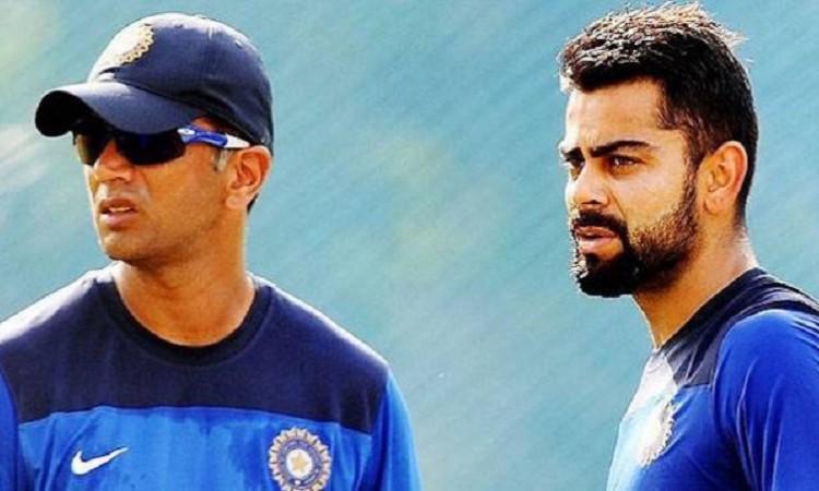 Rahul Dravid downplays Virat Kohli's 'rest' rumours