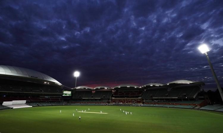Under lights, Adelaide wicket will be fastest in Australia, says Darren Lehmann