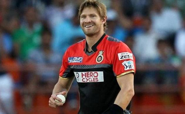 Shane Watson Record in Indian Premier League