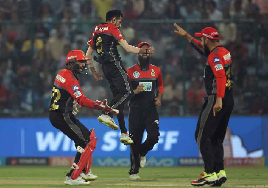 Royal Challengers Bangalores Yuzvendra Chahal Celebrates Fall Of Jason Roys Wicket During An IPL 201 in Hindi