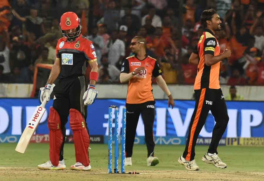 Sunrisers Hyderabads Sandeep Sharma Celebrates Fall Of Manan Vohras Wicket During An IPL 2018 Images in Hindi