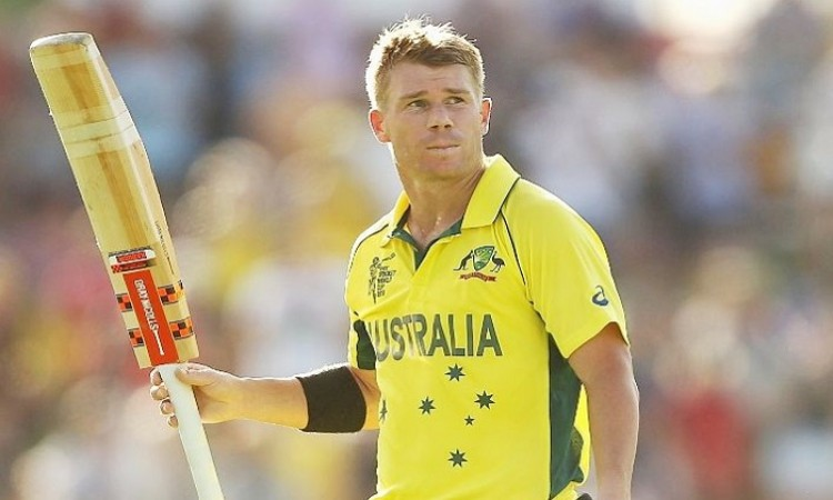 David Warner to join Channel Nine cricket commentary team