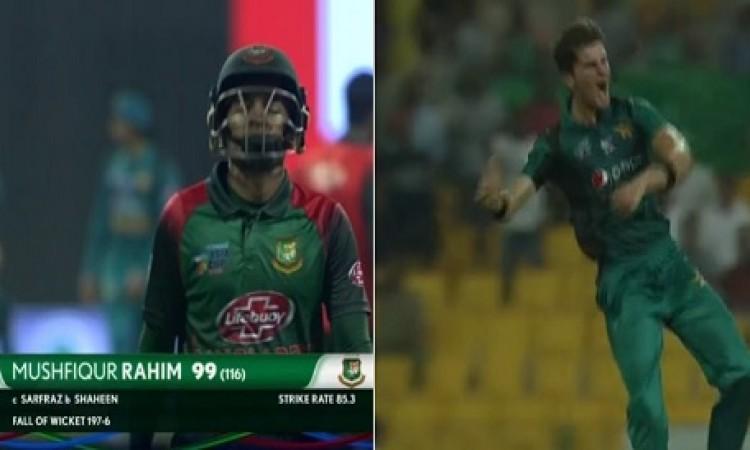 मुश्फीकुर रहीम शतक से चुके, पाकिस्तान को मिला 240 रनों का टारगेट Images