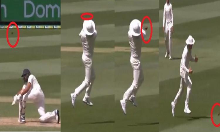 WATCH देखिए कैसे ऑस्ट्रेलियाई खिलाड़ियों ने मेलबर्न टेस्ट में की गड़बड़ फील्डिंग, छोड़े कई आसान कैच