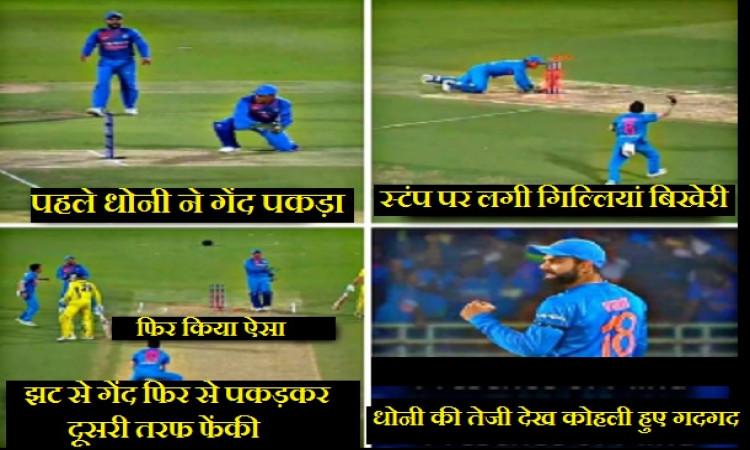 WATCH बल्लेबाजी में फेल हुए धोनी ने अक्लमंदी से डीआर्शी शॉर्ट को किया रन आउट, कोहली भी हुए हैरान Ima