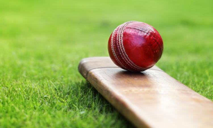 IPL 2019 Cricket Pitch