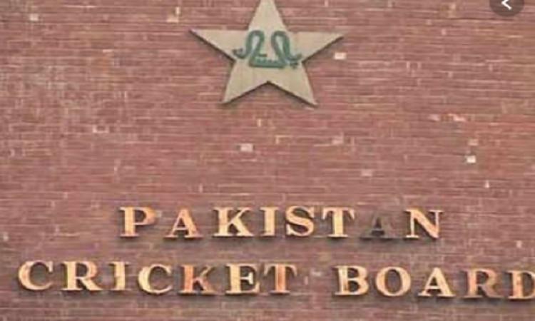 आखिरकार यह बड़ा दिग्गज बना पाकिस्तान क्रिकेट टीम का नया कोच ! Images