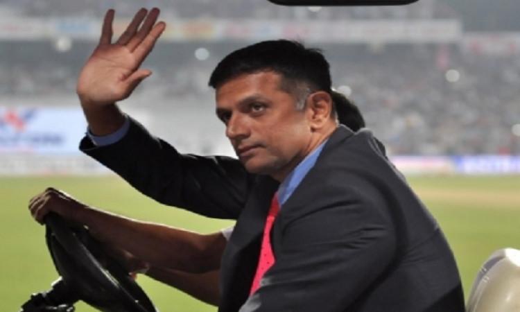 डे- नाइट टेस्ट को देखकर राहुल द्रविड़ भी हुए खश, ऐसे टेस्ट मैच खेलना पसंद करता ! Images