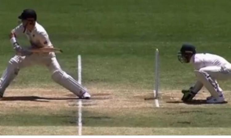 WATCH धोनी जैसी फुर्ती दिखाकर टिम पेन ने किया स्टंप, बल्लेबाज कुछ ना कर सका ! Images
