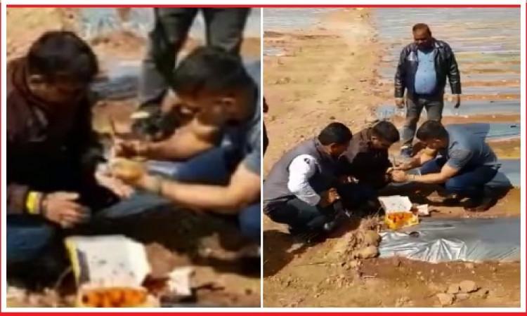 VIDEO आईपीएल 2020 के आगाज से पहले धोनी बन गए किसान, अपने होम टाउन रांची में कर रहे तरबूज, पपीते की ख