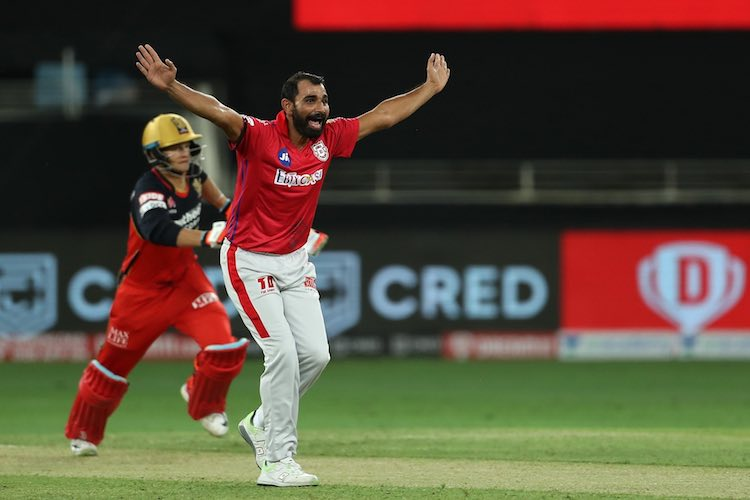 Mohammad Shami (KXIP) Images