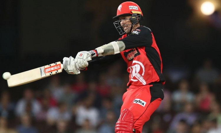 Tom Cooper Big Bash League