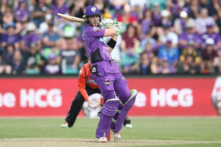 Tim Paine In BBL