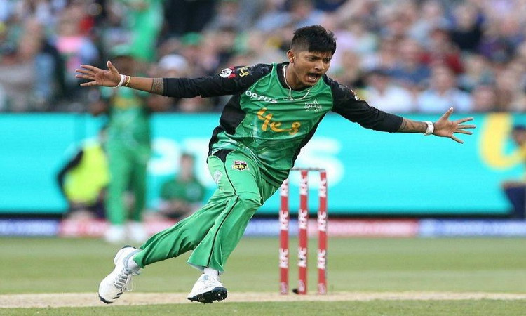 bbl 10 lamichhane signs with hobart hurricanes