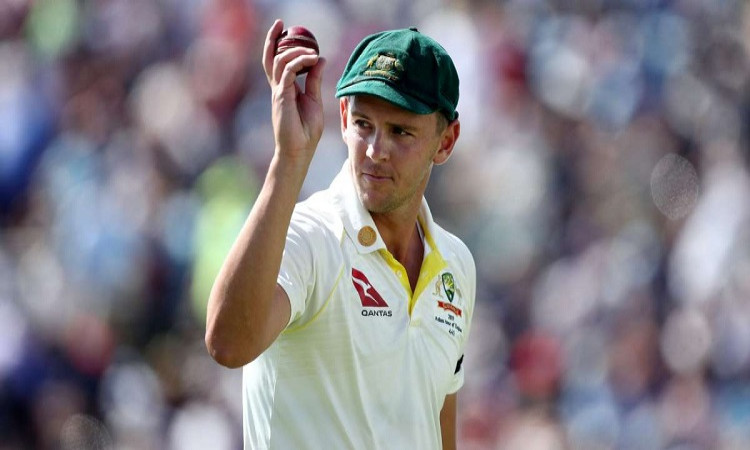 ind vs aus hazlewood wants d-n test at adelaide only