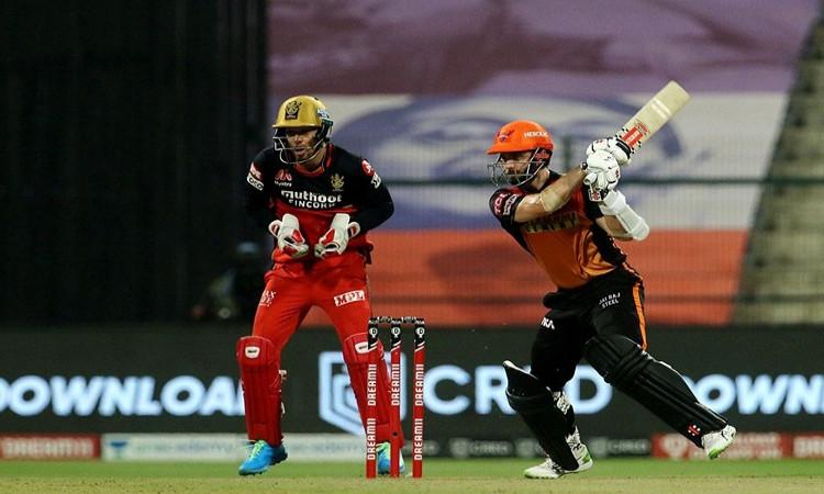 srh vs rcb kane is our banker plays the pressure innings says warner
