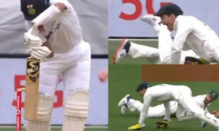 India vs Australia 2nd Test Tim Paine brilliant catch to dismiss Cheteshwar Pujara