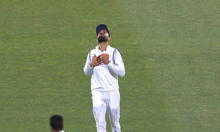 AUS vs IND: Kohli is disappointed with the fielders after the loss against Australia
