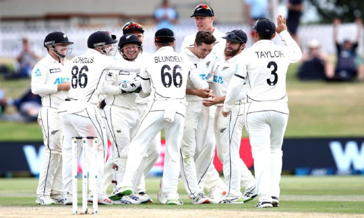 NZ vs PAK: New Zealand beat Pakistan by 101 runs, Williamson declared as Man of the Match