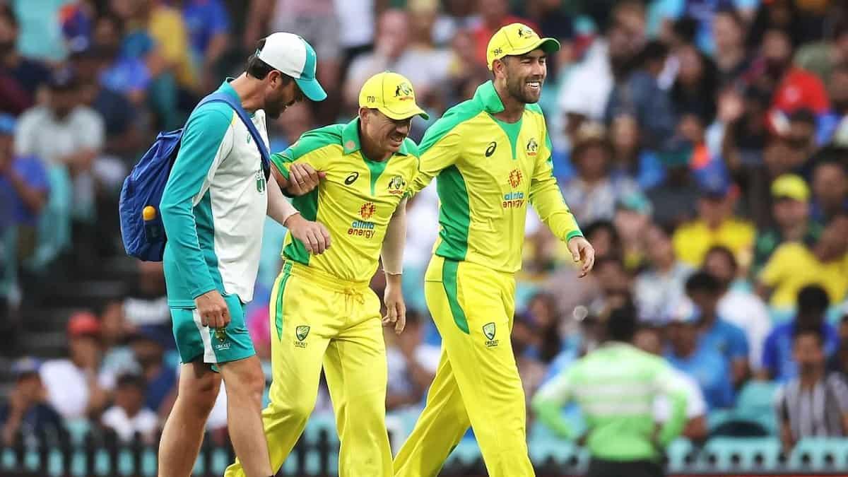 image for cricket david warner injury