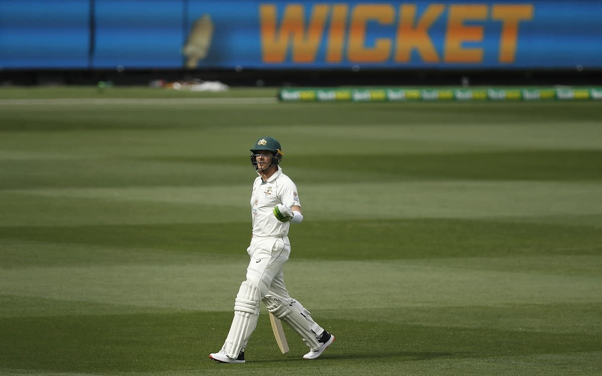 Image of Cricket Tim Paine Controversial Out