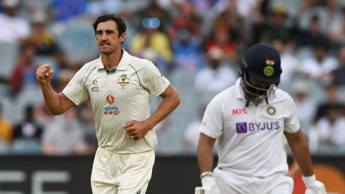 image for cricket mitchell starc 250 wickets