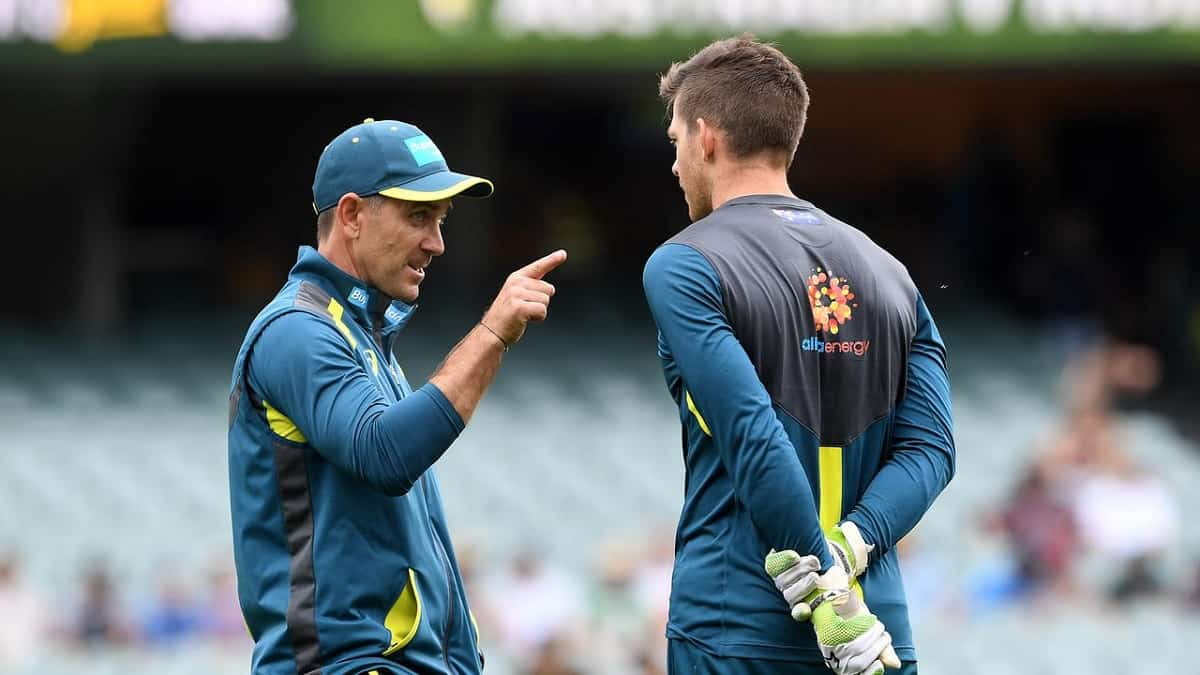 image for cricket tim paine most important player for australia
