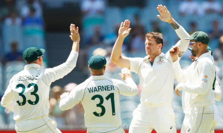 Australia pacer James Pattionson ruled out of third test vs india