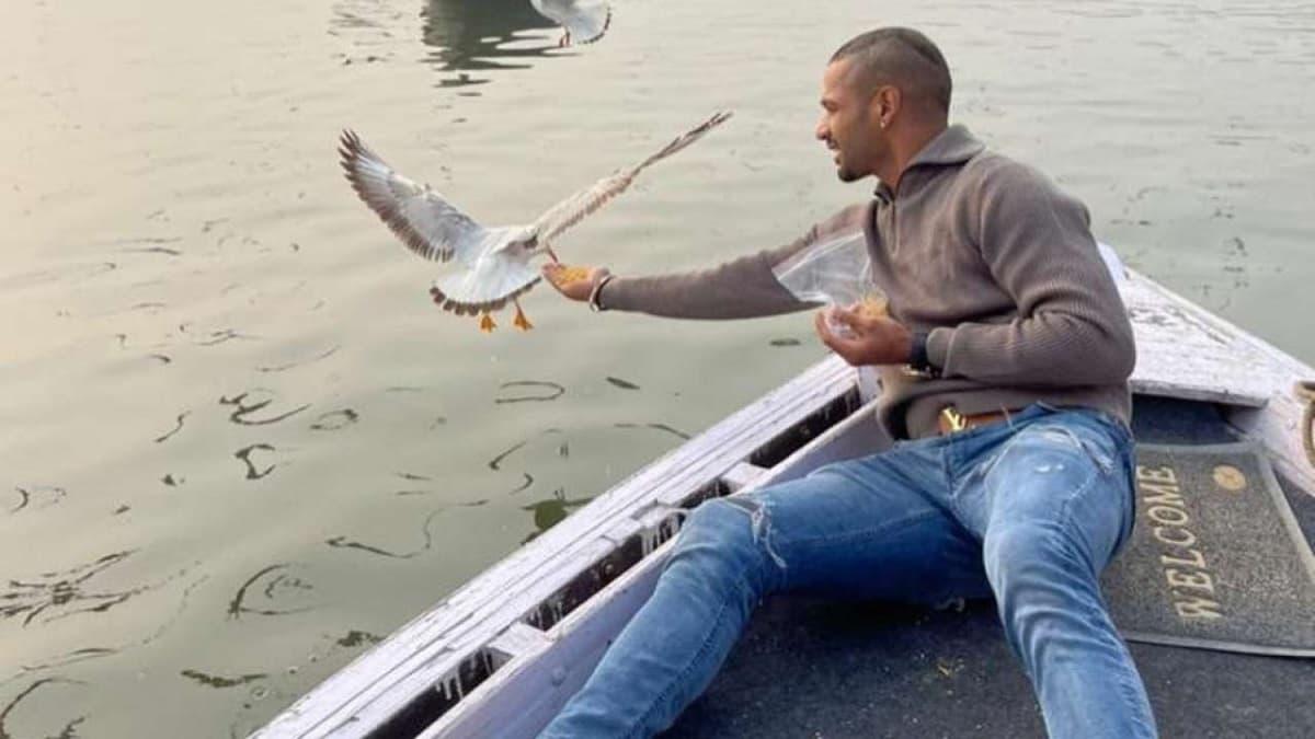 Shikhar Dhawan In Trouble For Feeding Birds In Varanasi