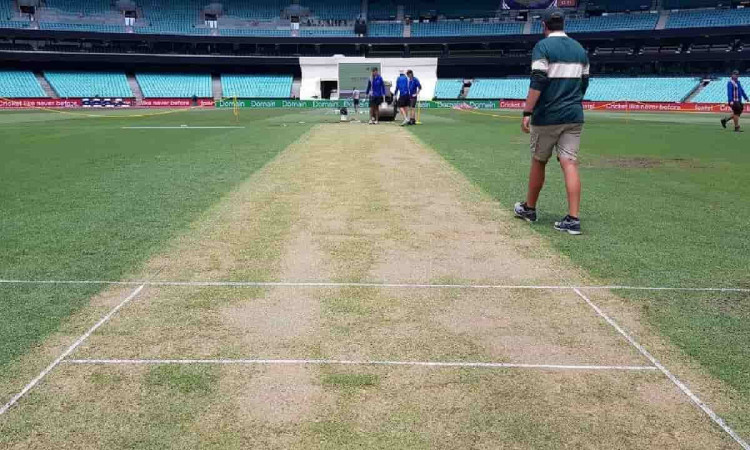 Image of Cricket Sydney Cricket Ground Pitch