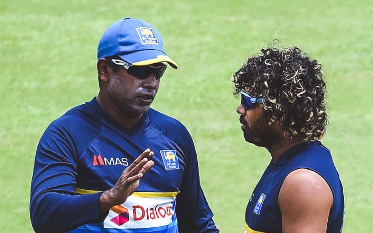 Cricket Image for चामिंडा वास ने अचानक श्रीलंका के गेंदबाजी कोच पद से दिया इस्तीफा, कारण है चौंकाने