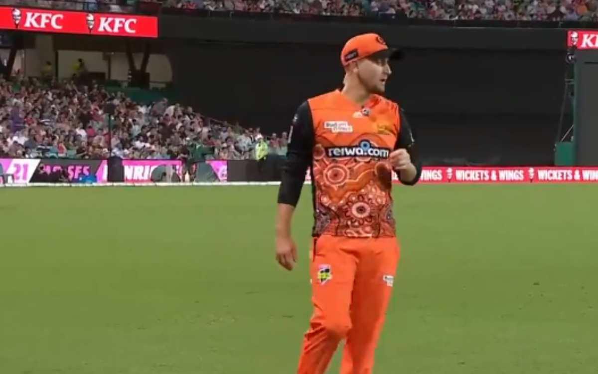 Cricket Image for 'अगर तुम इतने अच्छे होते, तो भारत के दौरे पर होते',  बीबीएल फाइनल के दौरान फैंस