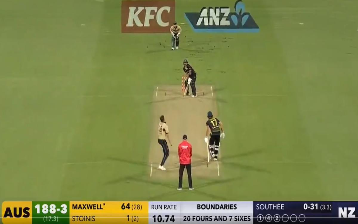 Cricket Image for New Zealand Vs Australia 3rd T20i Glenn Maxwell Scored 70 Runs From Just 31 Balls