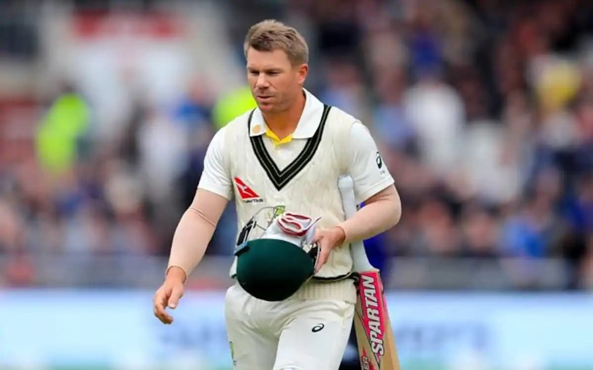 David Warner realizes the mistake made against India tour of australia