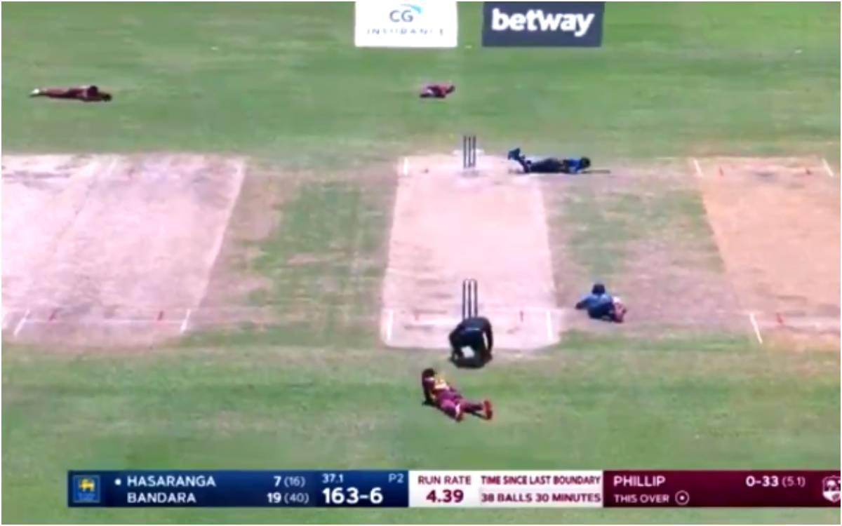 Cricket Image for VIDEO :  जब मधुमक्खियों के हमले से रुका WI vs SL का मुकाबला, अंपायर और खिलाड़ियों