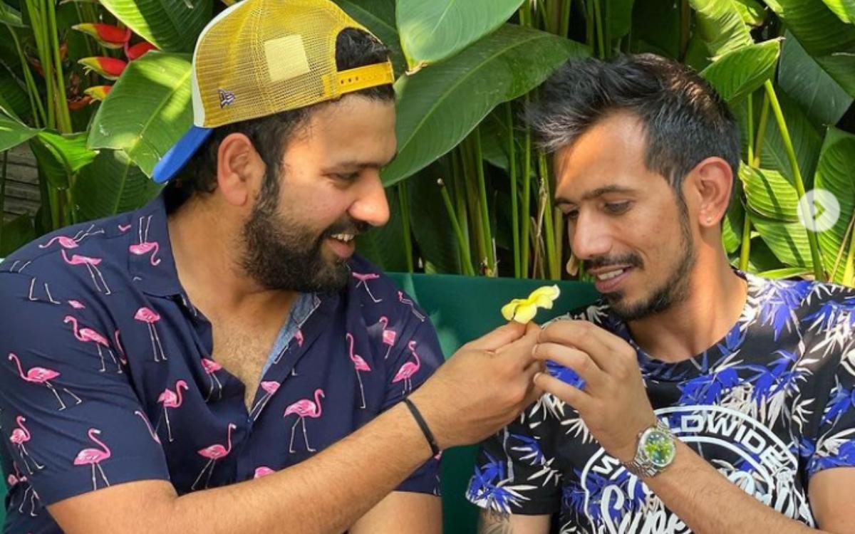 Cricket Image for 'भाई तुम लोग 'जैम्पा-स्टोइनिस' क्यों बन रहे हो', रोहित शर्मा के साथ ब्रोमांस करना