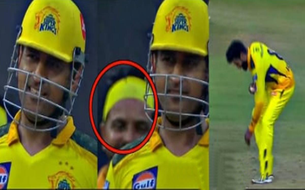 Cricket Image for Ipl 2021 Ms Dhoni Funny Talk To Ravindra Jadeja