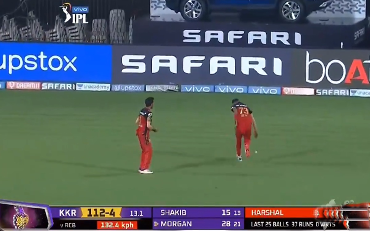Cricket Image for Mohammed Siraj And Yuzvendra Chahal Drop Catch Watch Video