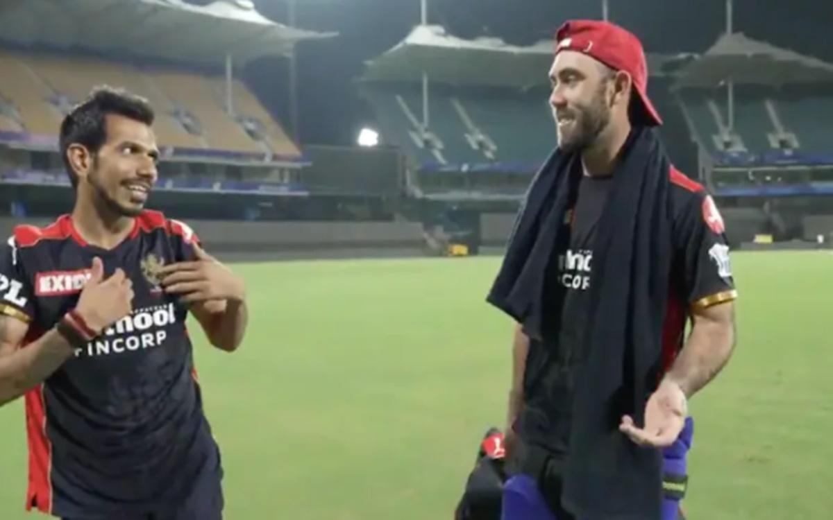 Cricket Image for WATCH:'फोन जीतने के लिए मैक्सवेल आसान कैच को डाइव मारकर पकड़ते हैं', चहल हुए 'बिग