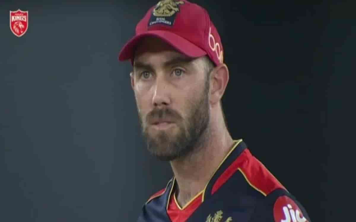 Cricket Image for Pbks Vs Rcb Glenn Maxwell Refuses To Go Back To The Dugout Watch Video
