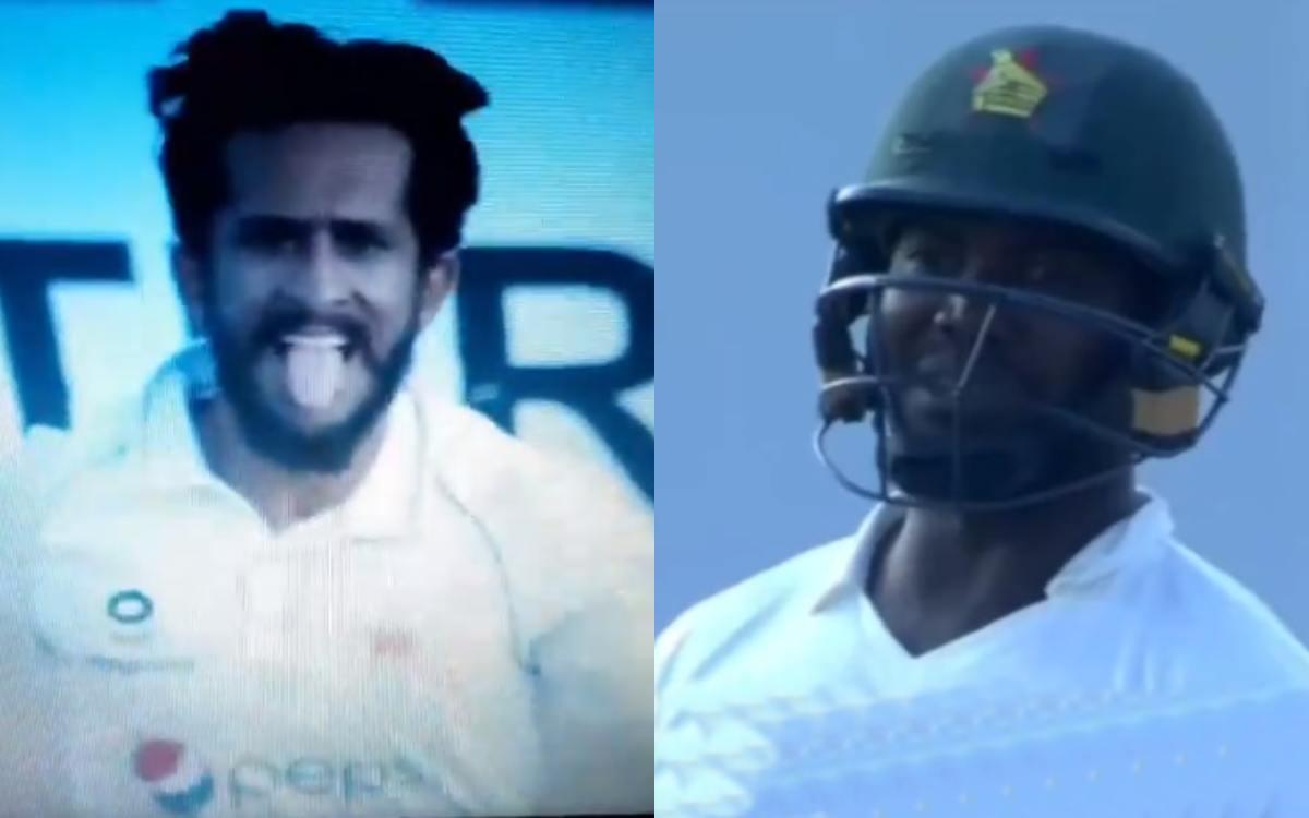 Cricket Image for Zim Vs Pak Hasan Ali And Luke Jongwe Fight Watch Video