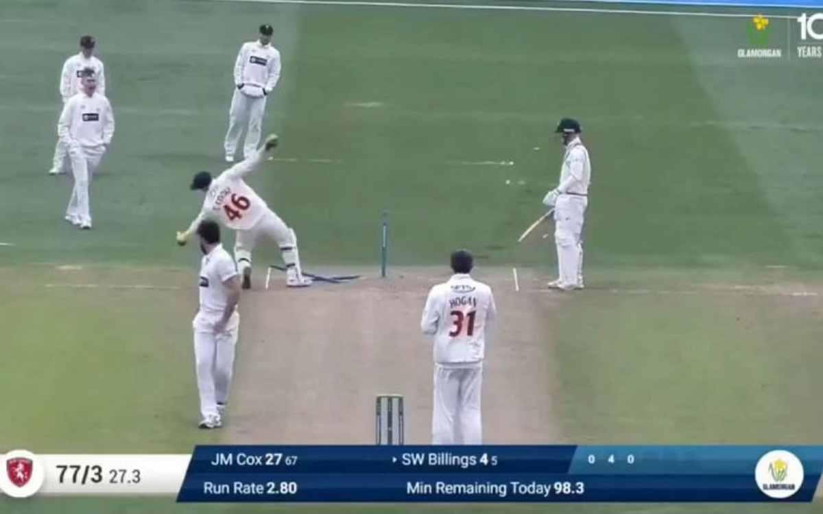 Cricket Image for VIDEO : स्टंप्स से कुछ ऐसे भिड़ा ये विकेटकीपर, बीच मैदान ज़ोर-ज़ोर से हंसने लगे सा