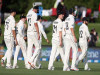 Cricket Image for New Zealand Cricket Team Journey To World Test Championship Final