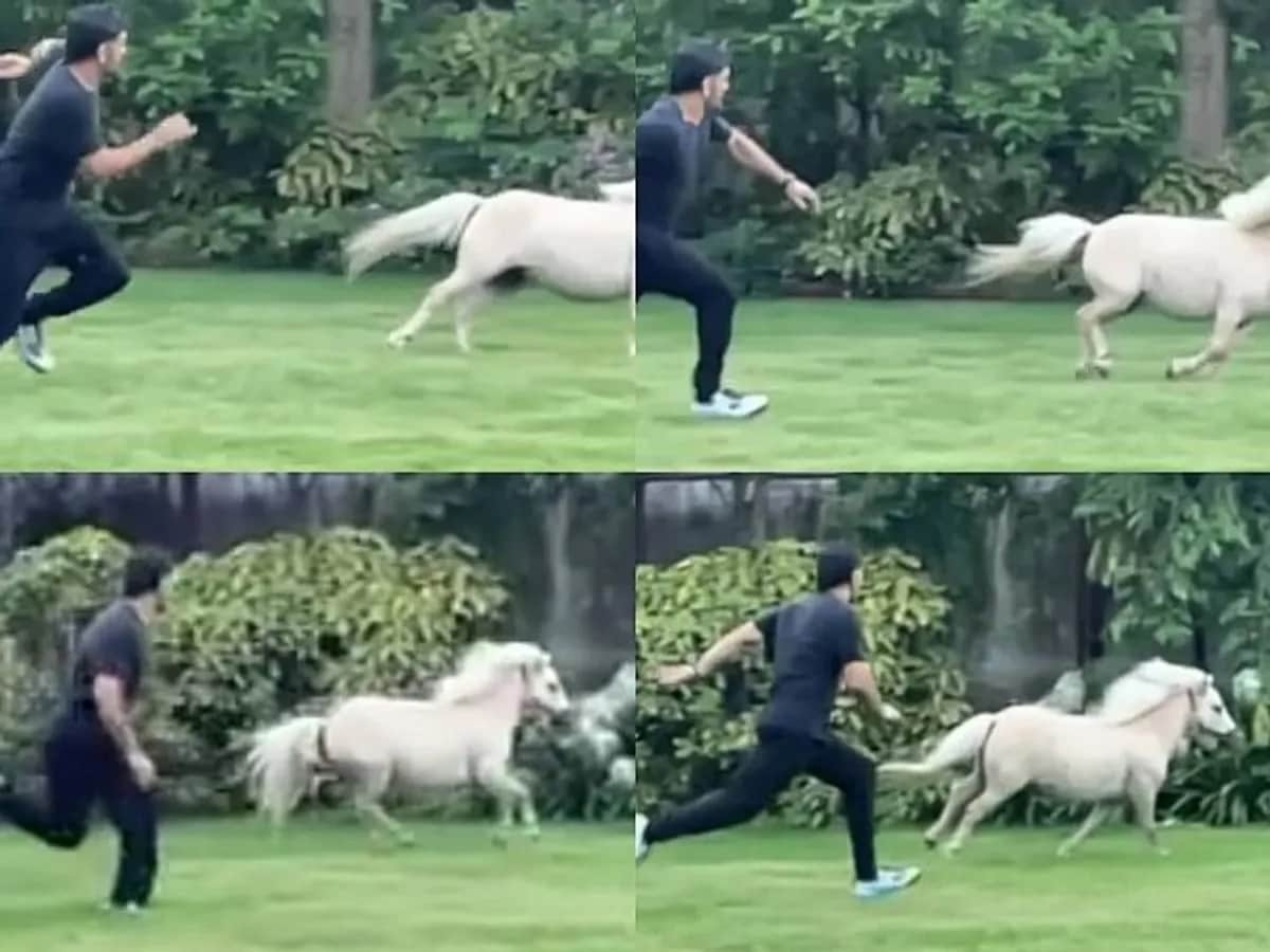 Cricket Image for MS Dhoni Races With His Shetland Pony, Watch Video