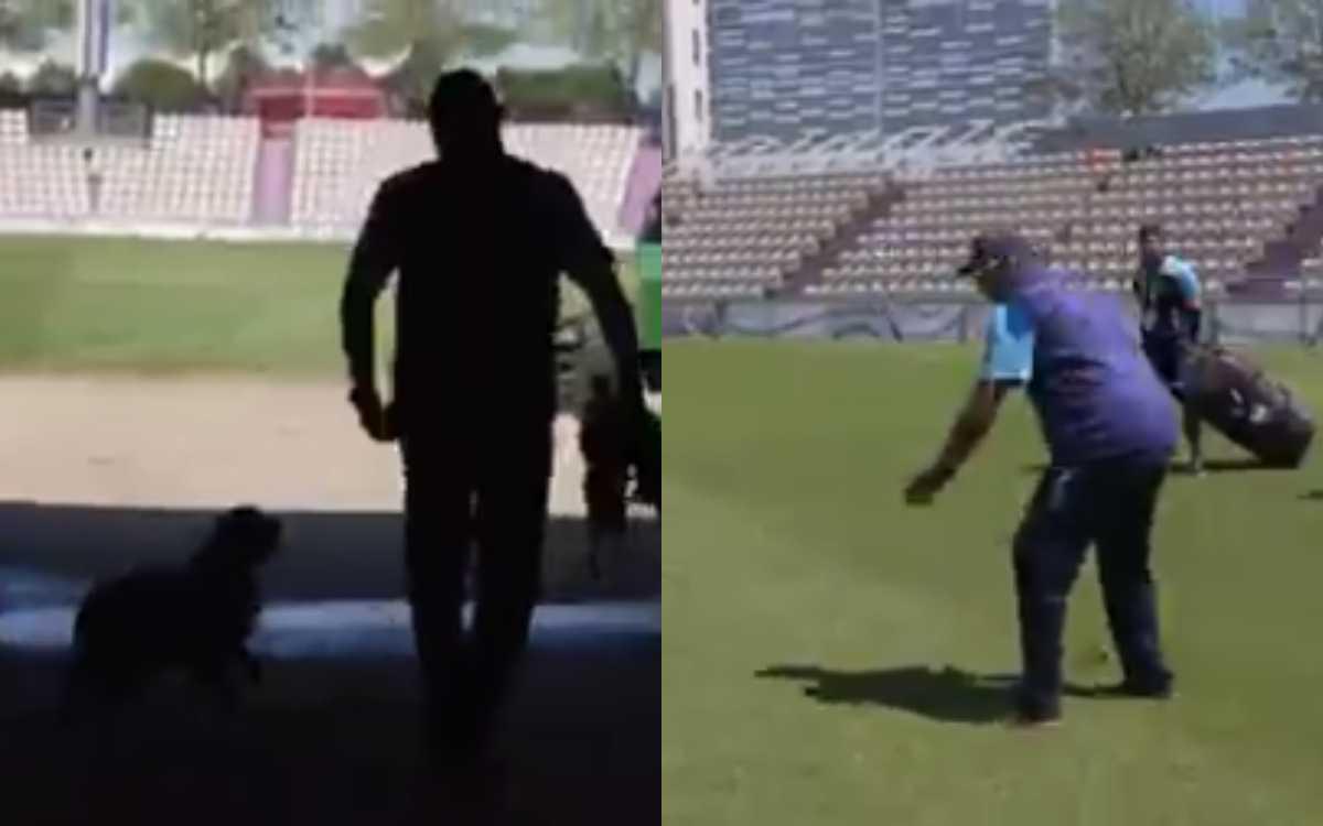 Cricket Image for VIDEO : साउथैम्पटन में शास्त्री ने बनाया नया दोस्त, टीम इंडिया को छोड़ 'डॉगी' को क
