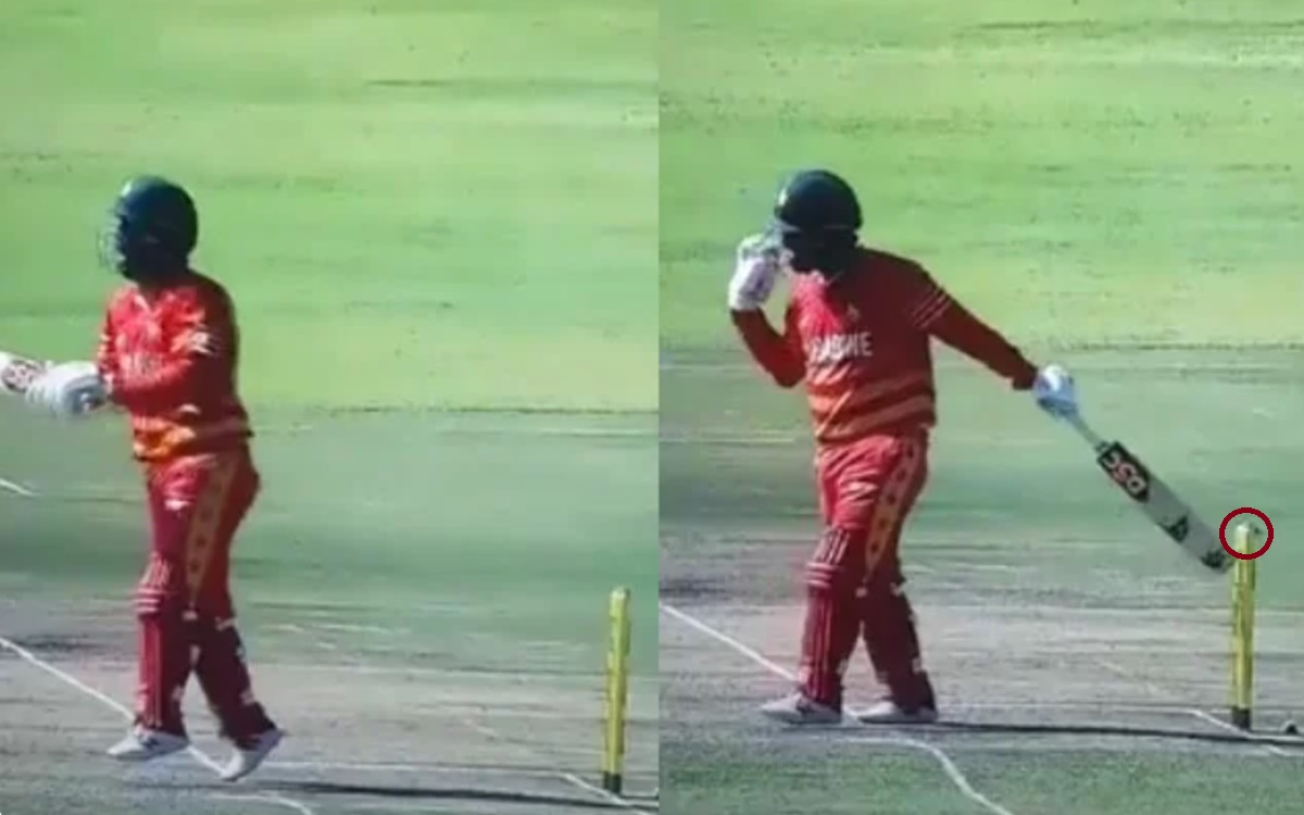 Cricket Image for Zimbabwe Vs Bangladesh Brendan Taylor Gets Out In A Shocking Manner Watch Video