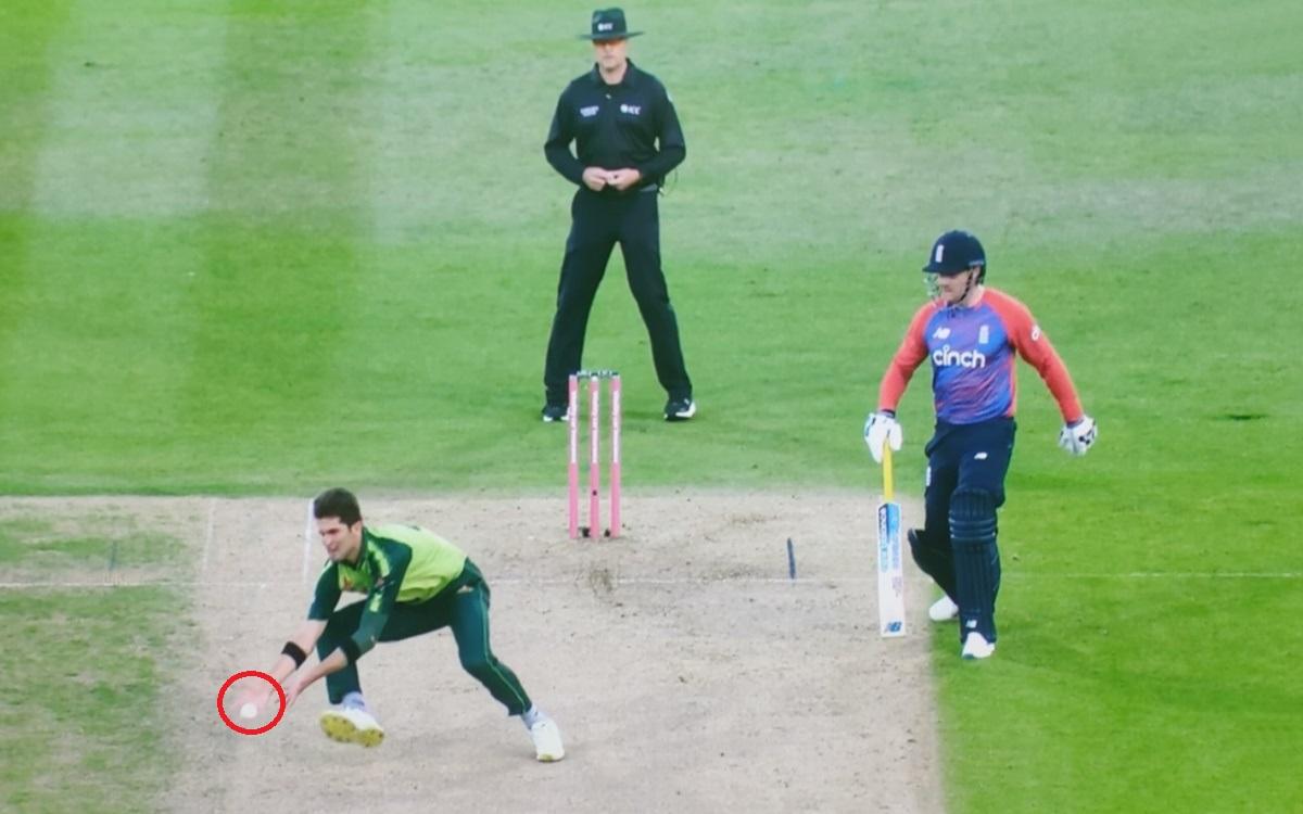 Cricket Image for Eng Vs Pak Shaheen Afridi Brilliant Catch To Dismiss Dawid Mala