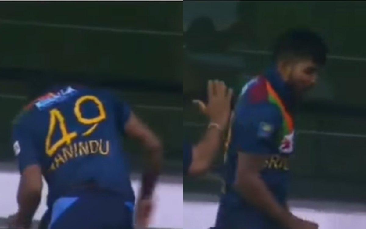 Cricket Image for VIDEO : हसरंगा ने ज़मीन पर पटकी पानी की बोतल, जोशीले अंदाज़ में मनाया जीत का जश्न