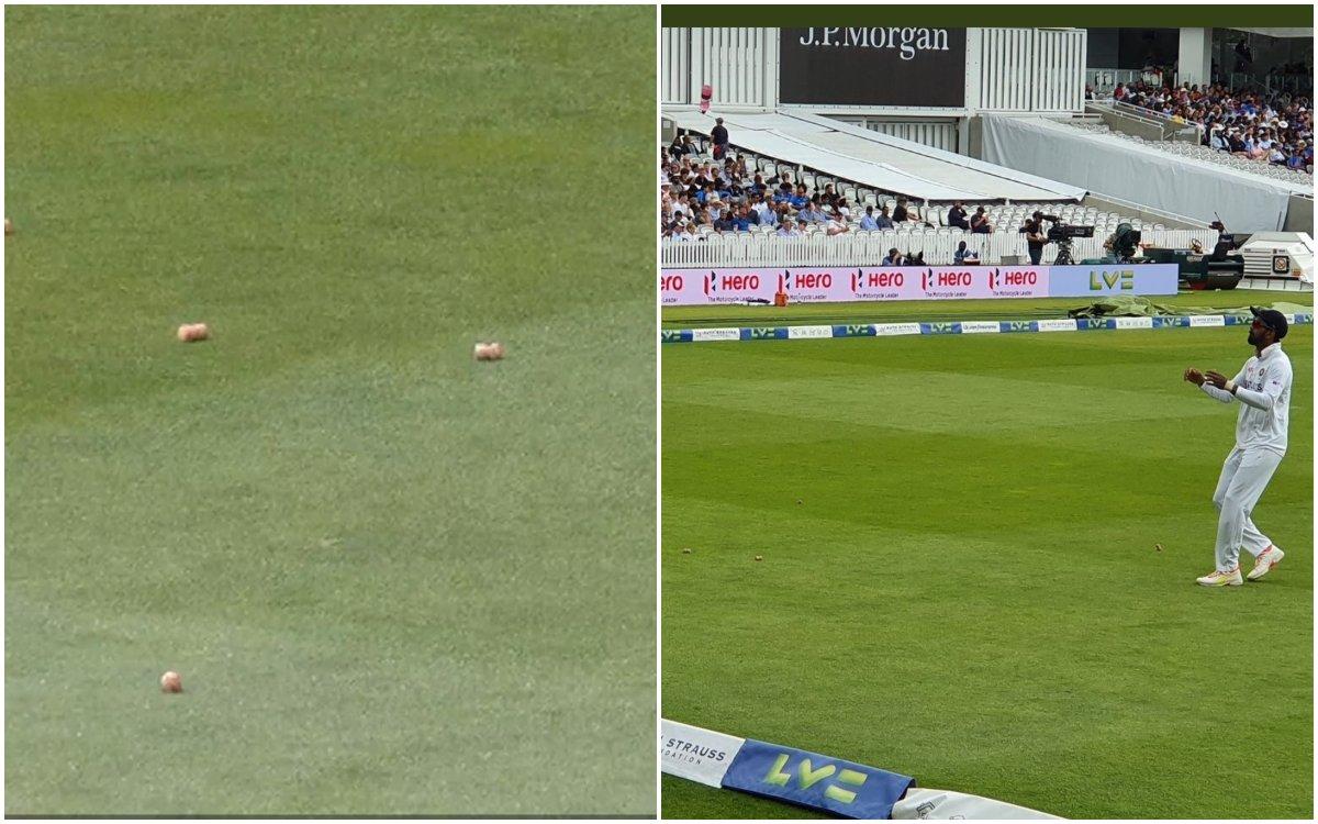 Cricket Image for VIDEO : इंग्लिश फैंस ने की बदतमीजी की हदें पार, राहुल पर फेंके शराब की बोतल के ढक्