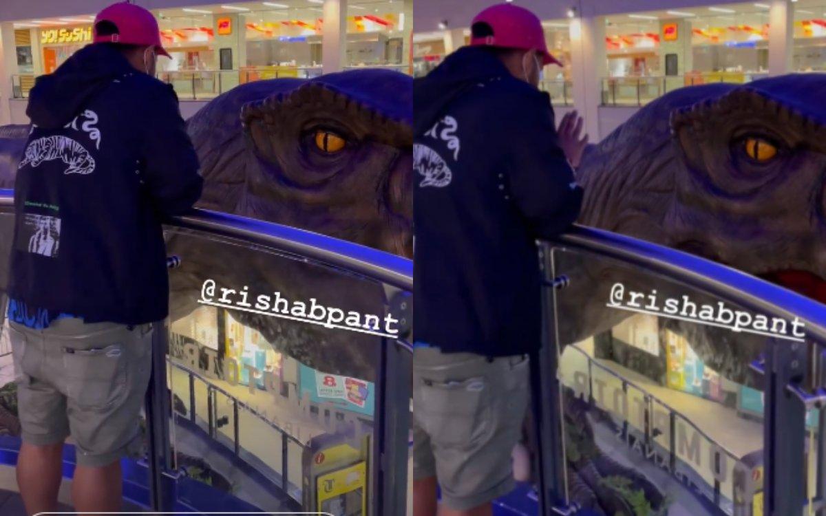 Cricket Image for VIDEO : ऋषभ पंत ने पूछा 'डायनासोर' का हाल चाल, वायरल हो रहा है वीडियो